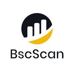 BSC Scan Logo